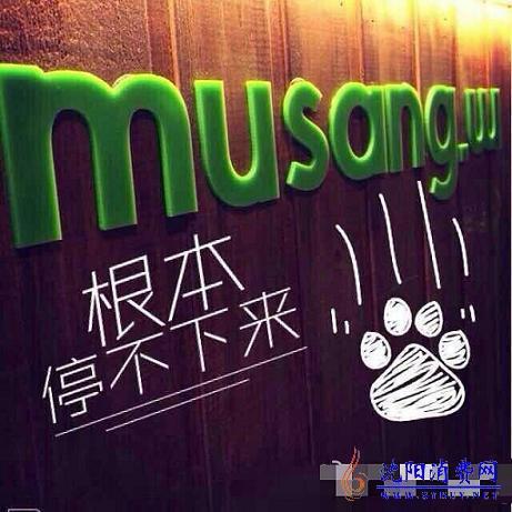musang.w猫山王甜品进驻沈阳大悦城